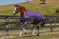 ComfiTec Plus Dynamic Blanket