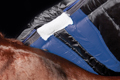 Wither Relief