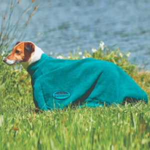 Weatherbeeta Dog Bag