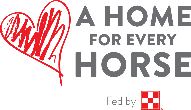 AHFEH logo
